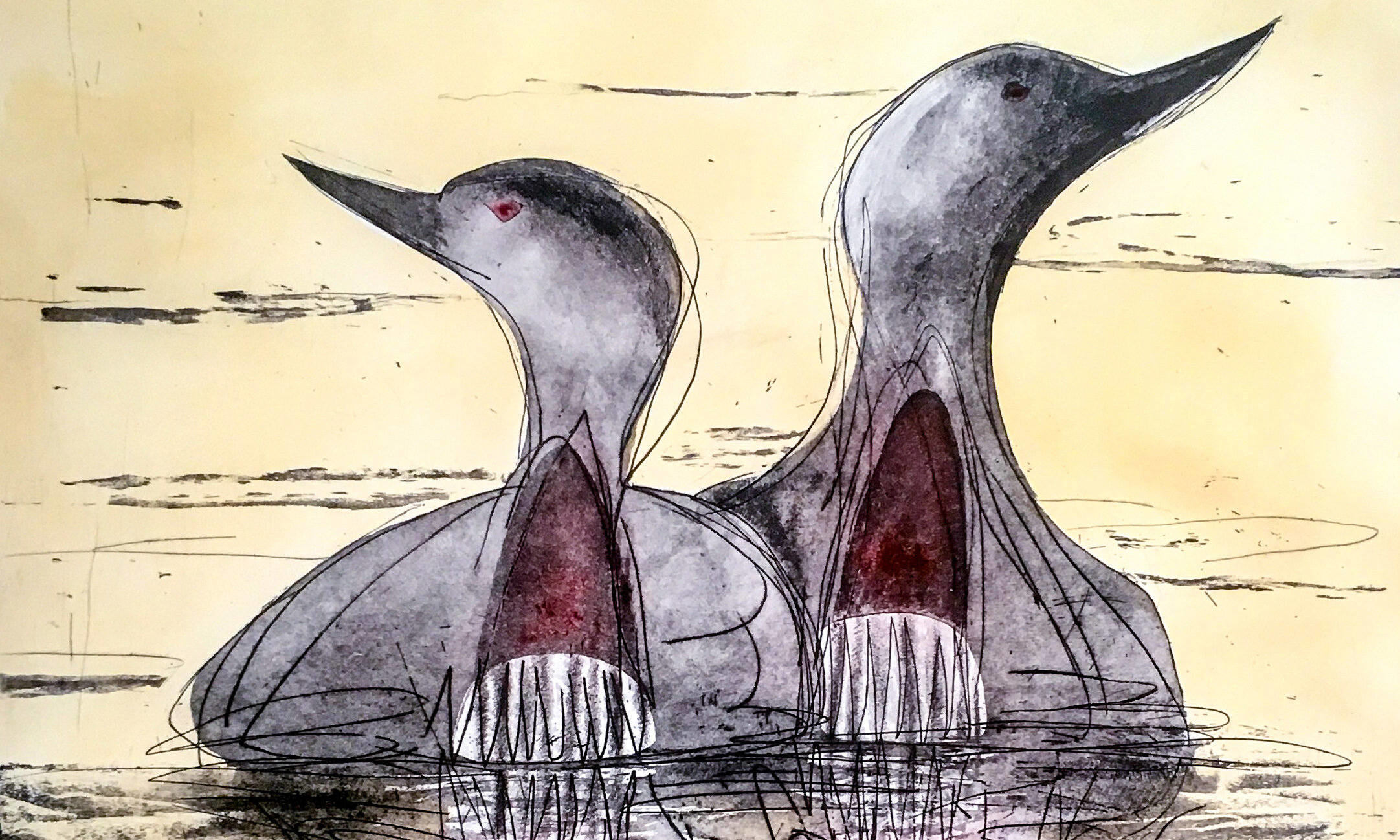 Lisa Hopper, Red Throated Divers