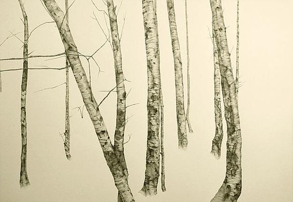 Victoria Clare Bernie, Birch Wall