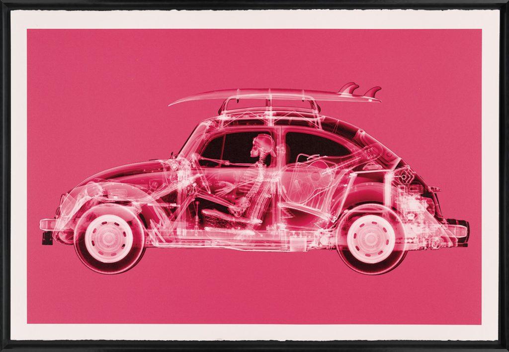 Nick Veasey - California Bug (Large Pink)