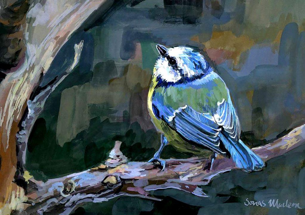 Sonas Maclean - Kind of Blue