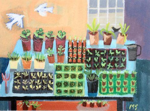 Morag Stevenson - Seedlings ll
