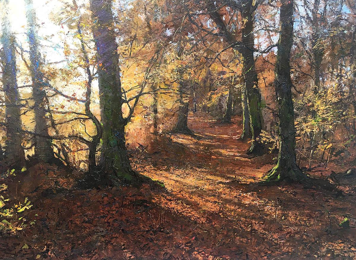 Jonathan Mitchell, 'Autumn Light Caddam Wood', oil