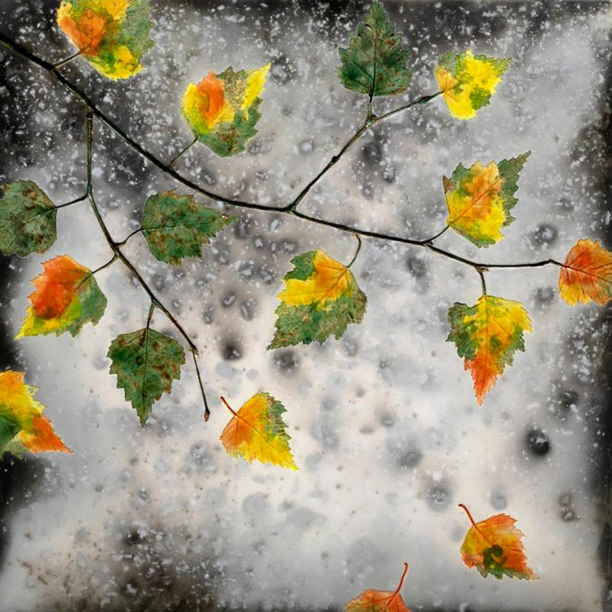 Helen Michie, 'Falling Autumn Birch III,' raku-fired ceramic wall piece