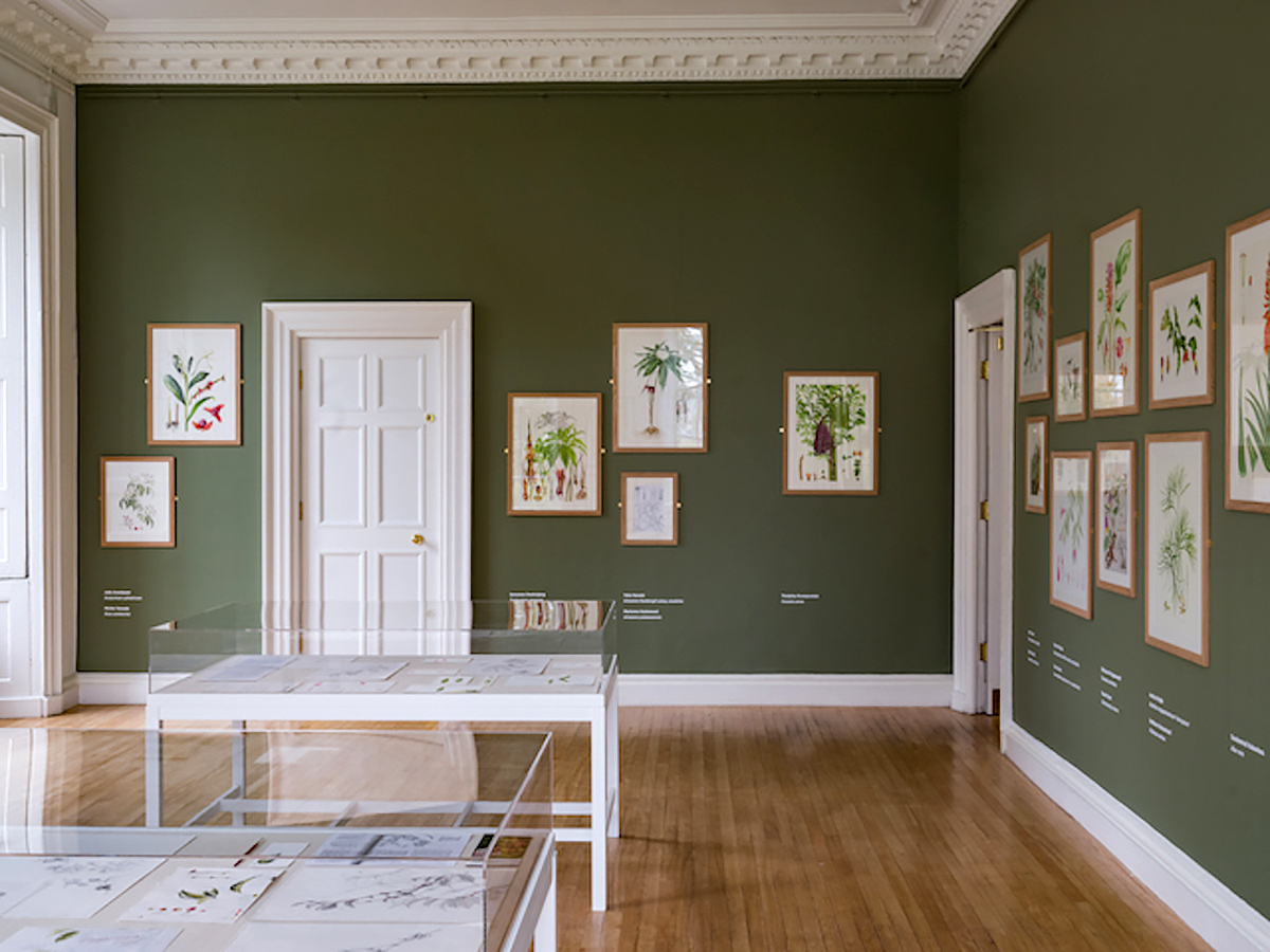 Inverleith House gallery layout