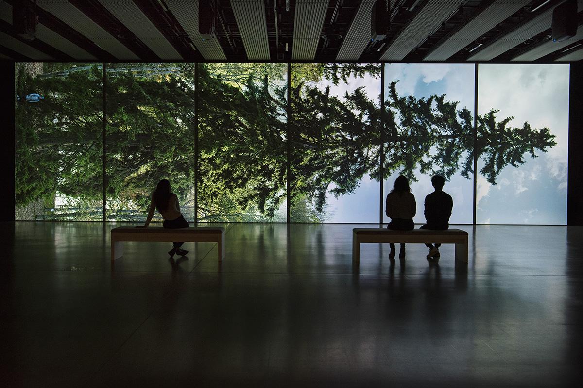 Eija-Liisa Ahtila's Horizontal - Vaakasuora (2011) © Crystal Eye, Helsinki, 2020, Photo: Linda Nylind (Hayward Gallery)