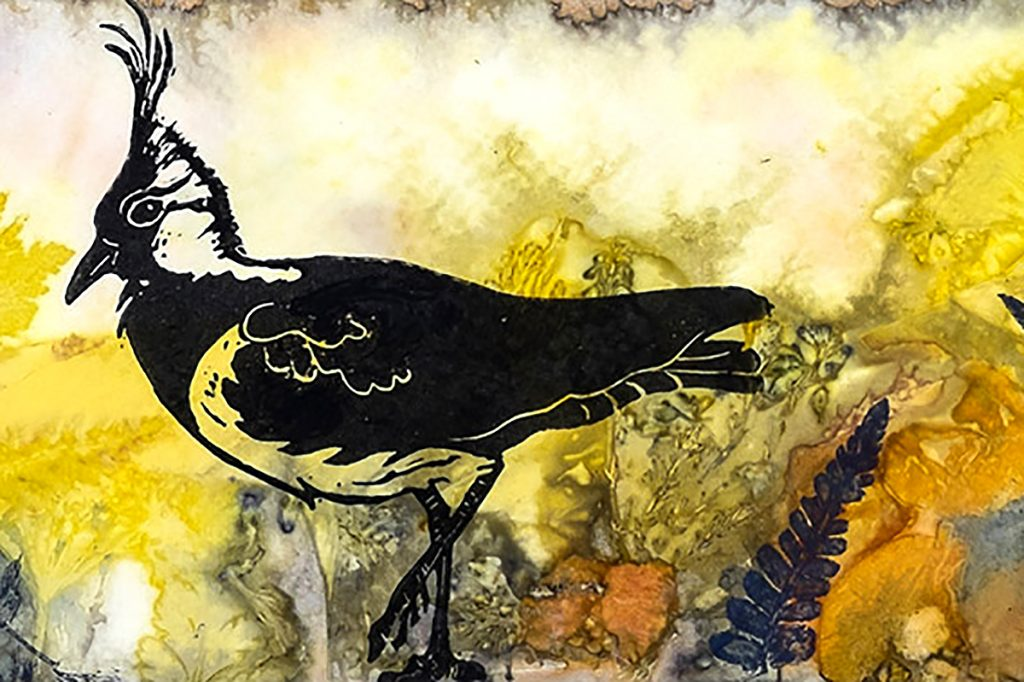 Louise Worthy, 'Summer Day Lapwing'