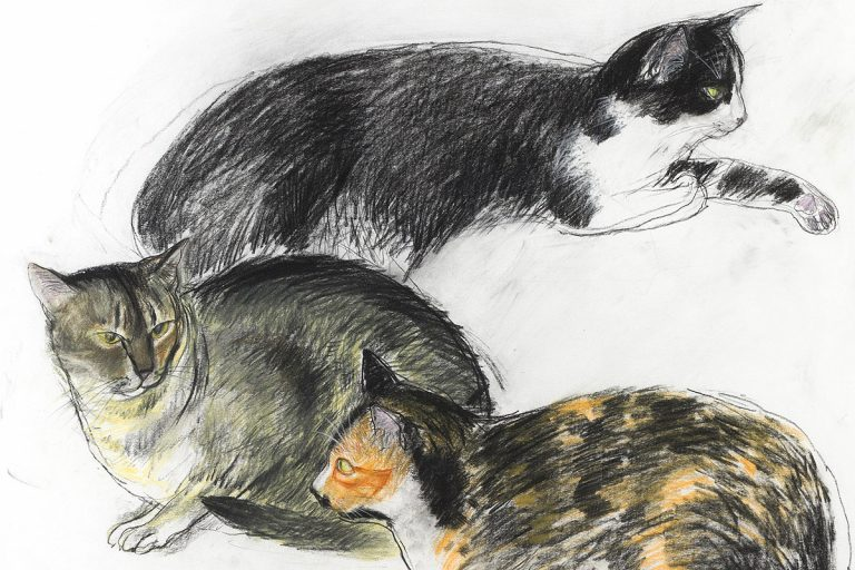Elizabeth Blackadder, 'Three Cats', pastel