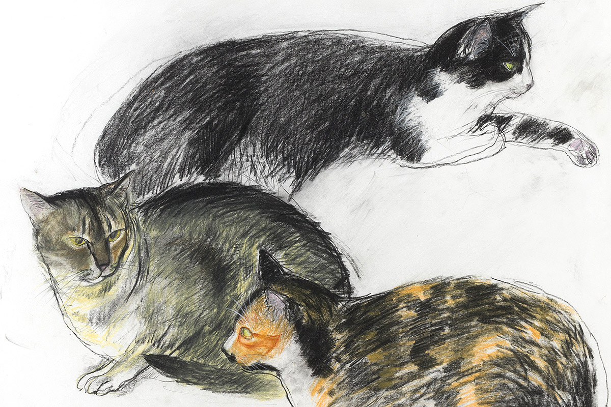 Elizabeth Blackadder, 'Three Cats', pastel