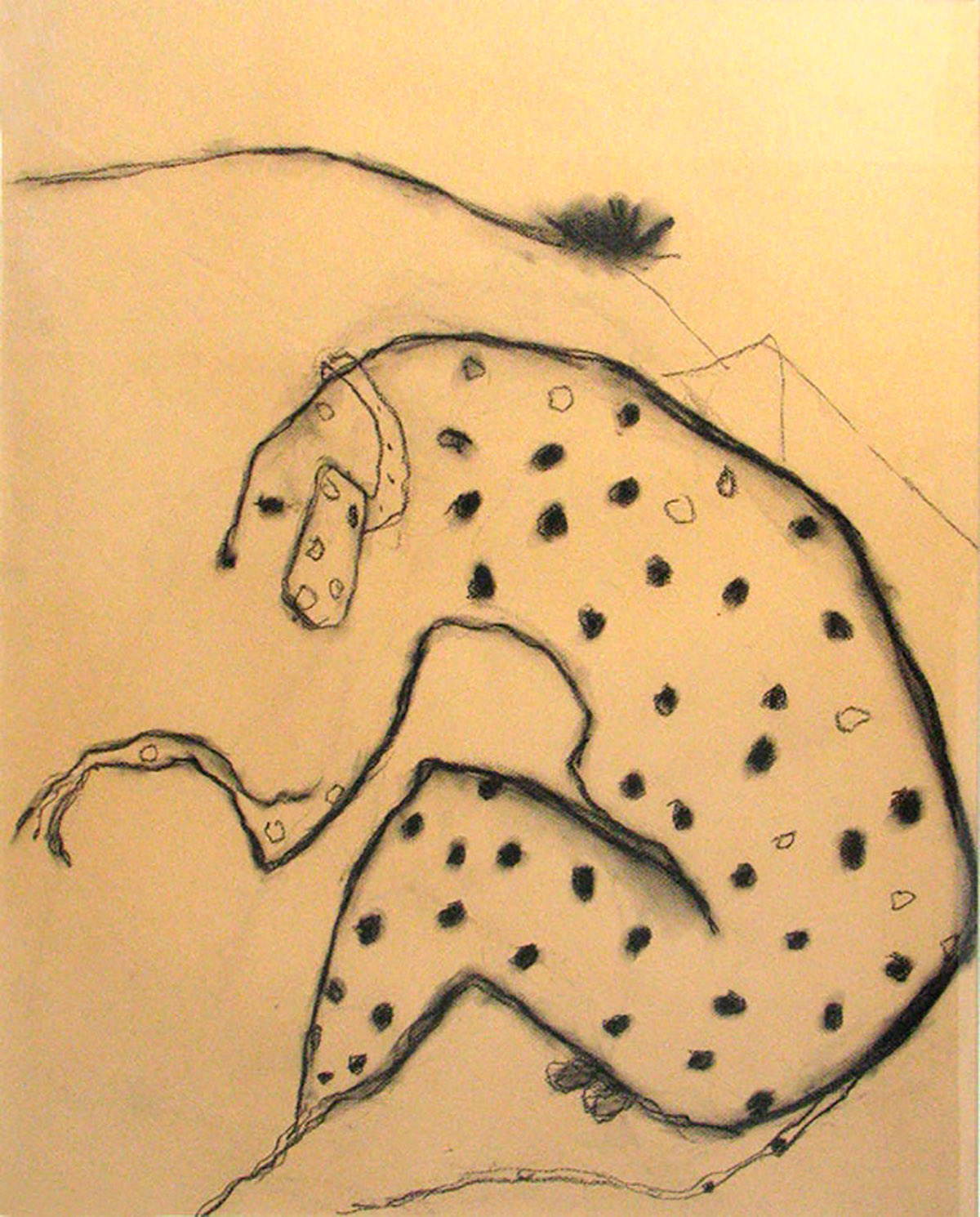 Pat Douthwaite, 'Spotted Dog (Henry Dooley)', pastel