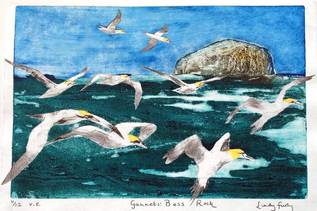Lindy Furby, 'Gannets Bass Rock', handprinted collagraph