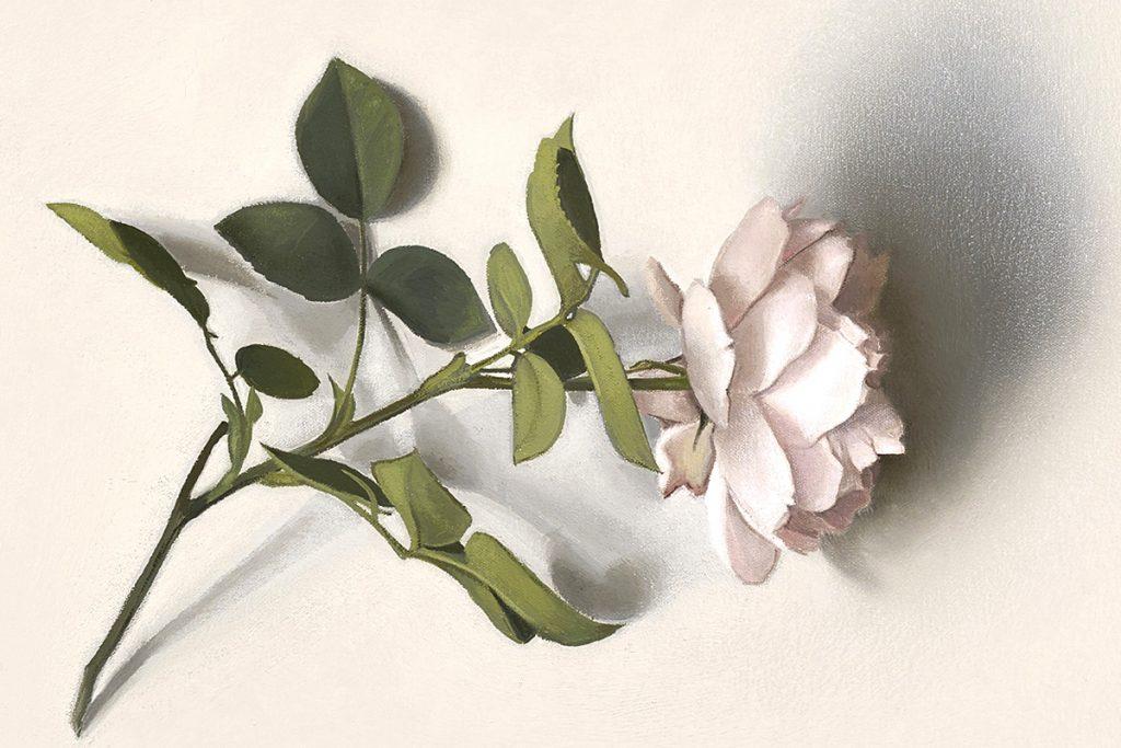 Alison Watt, 'Centifolia', (detail)