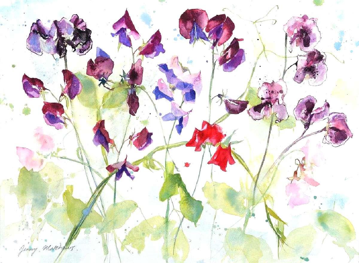 Jenny Matthews, 'Sweet Peas in the Rain', watercolour on paper
