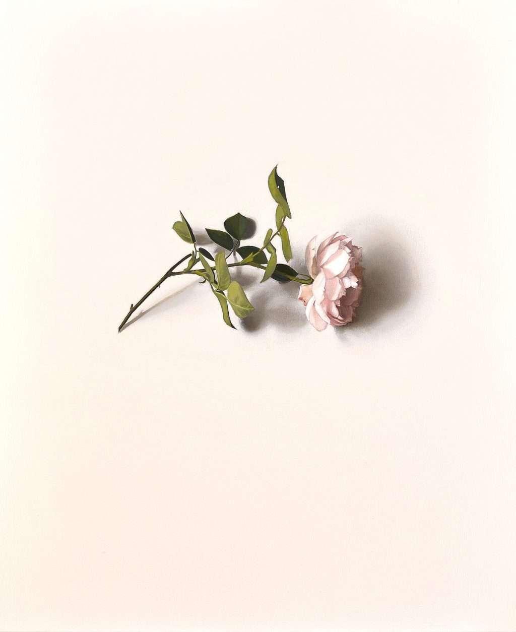 Alison Watt, 'Centifolia', oil on canvas